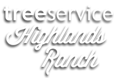 Tree Service Highlands Ranch